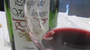 Bodegas y Viñedos Vinos Valtuille 3