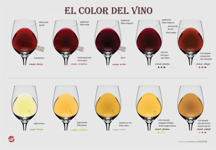 ¿Qué nos dice el color de un vino? 1