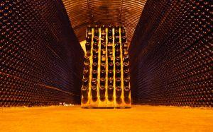 Francia construye una 'ciudad' dedicada exclusivamente al vino 3