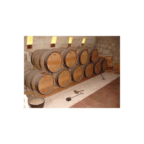 Inauguración del nuevo Museo del Vino Ribera del Duero