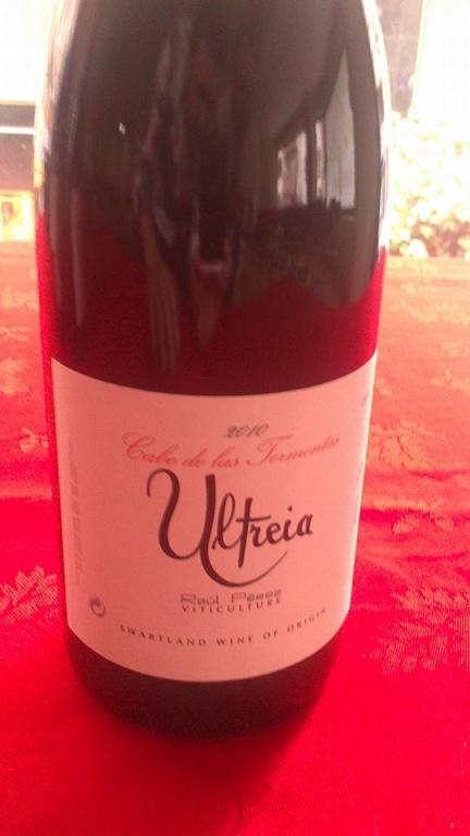 Cata de los vinos del proyecto Ultreia de Raúl Pérez en el Sexto Sentido 5