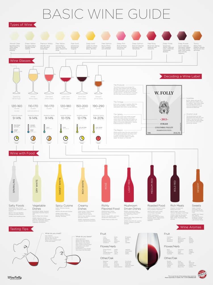 Guía básica para principiantes en el mundo del vino (#infografia) 1