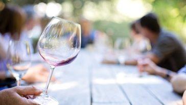 Qué son los vinos tempranos 1