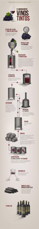 Fases en la elaboración de los vinos tintos #infografia 1