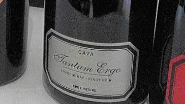 Cava Tantum Ergo Chardonnay Pinot Noir Brut 2011 1
