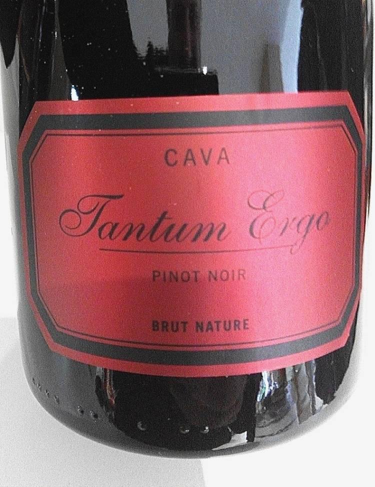 Cava Tantum Ergo Pinot Noir 2012 1
