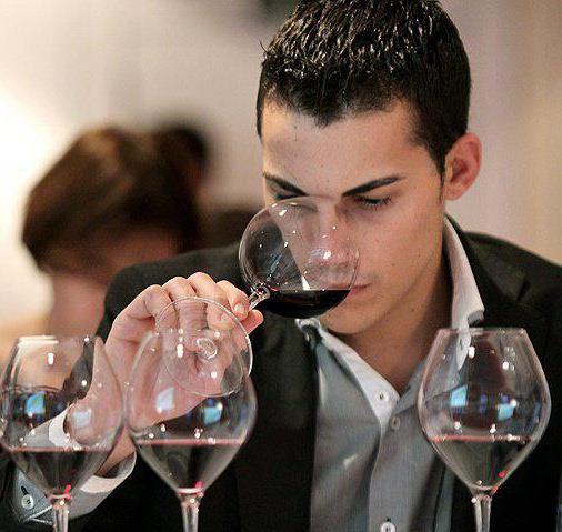 Guillermo Cruz (restaurante Mugaritz) mejor sumiller de España 2014 1