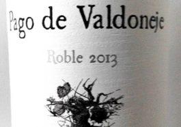 Pago de Valdoneje Roble 2013 1
