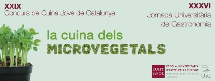 1431618301_concurs_microvegeltas