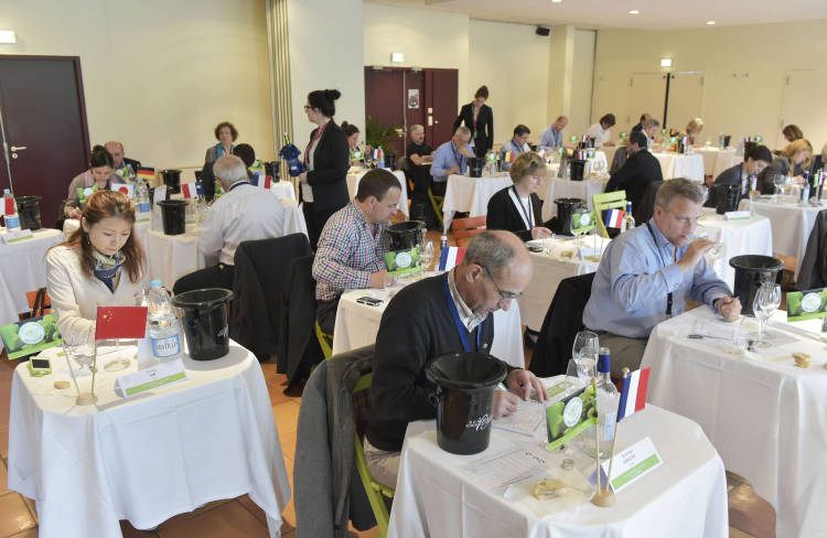 6 Medallas para los vinos de la D.O. Rueda en el Concurso Mundial Sauvignon 1