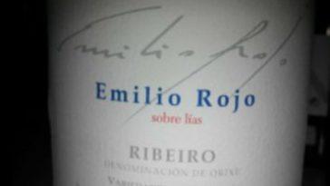 Emilio Rojo 2013 1