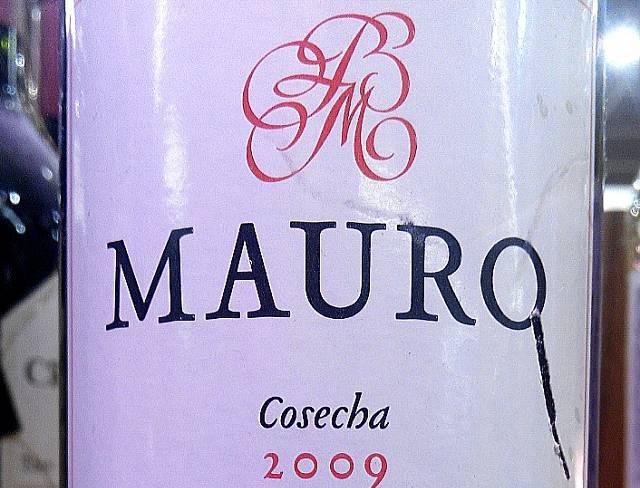 Mauro 2009 3