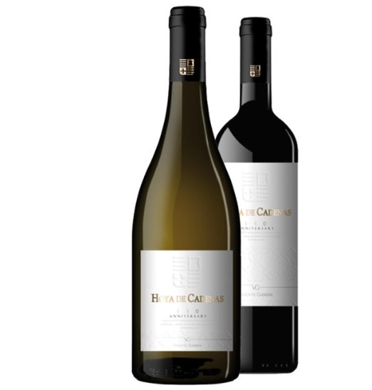 2 Nuevos vinos de Vicente Gandia para celebrar el 130 aniversario de la bodega 1