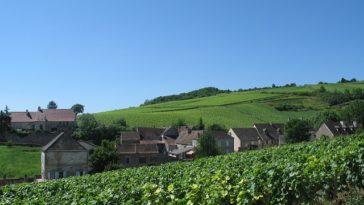 Champaña y Borgoña reconocidas como Patrimonio de la Humanidad por la UNESCO 1