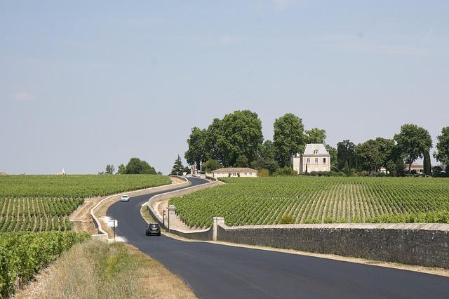 Las 5 mejores rutas del vino del mundo para National Geographic 4
