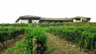 Reconocimiento internacional a los vinos Reservas de Bodegas Ondarre 1