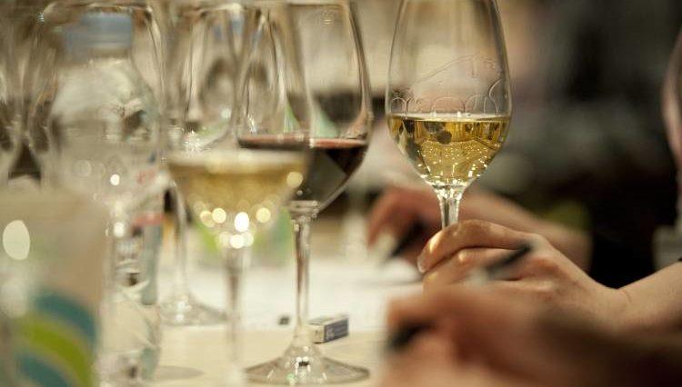 El vino blanco tiene los mismos beneficios para la salud que el vino tinto 1