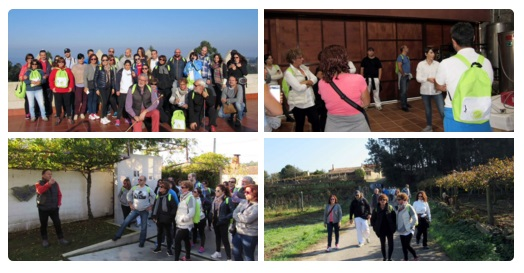 Una ruta de senderismo entre viñedos puso fin a las actividades de la Ruta do Viño Rías Baixas para este año 5