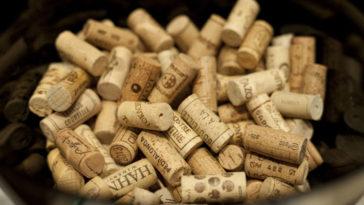 Argentina reduce en un 12% la producción de vino 1