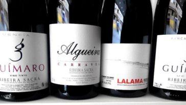 Catando vinos tintos de la Ribeira Sacra 1