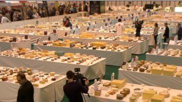 El queso Torta De Trujillo de Quesería Finca Pascualete, el mejor queso de España en los World Cheese Awards 1