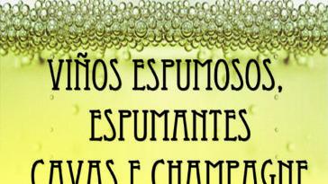 Cata de Espumosos, Espumantes, Cavas y Champagne este sábado en el Centro del Vino de la Ribeira Sacra 1