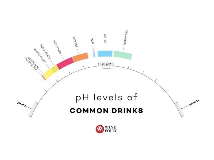 La acidez en el vino 1