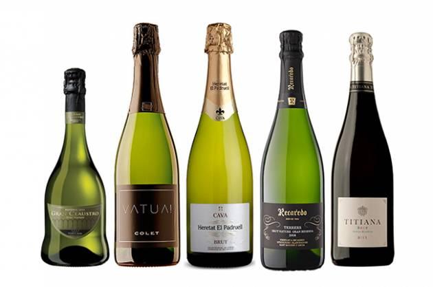 Los 5 mejores cavas para Decanter estas Navidades si no queremos champagne 1