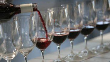 Treasury Wine Estates primer gran productor que incluye las calorías de sus vinos en la etiqueta 1