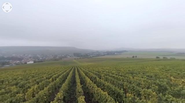 Un paseo de 360º en 3D por los viñedos de la región de la Champagne 1