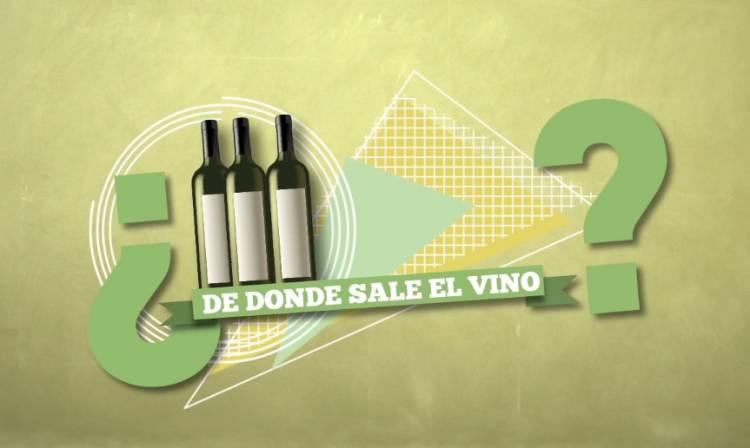 D.O. Rías Baixas, ¿cómo se hace el vino? (vídeo explicativo de poco  más de 2 minutos) 1