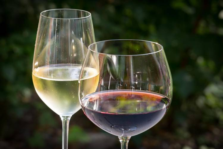 El tipo de copa afecta a como percibimos un vino en una cata 1