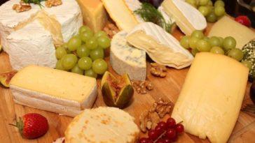 Maridando quesos y vinos elaborados con diferentes uvas 14