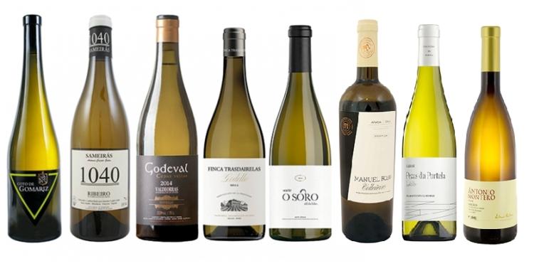 Decanter descubre 8 vinos gallegos de la mano de Pedro Ballesteros 1