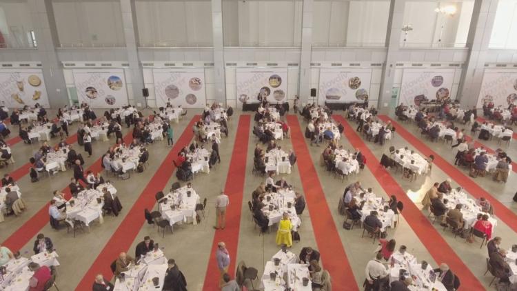 Concurso Mundial de Bruselas 2016 en Plovdiv