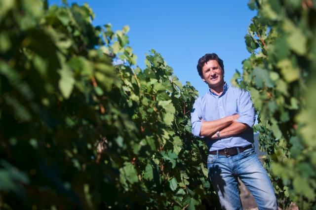 Sorte O Soro 2014, para Parker el mejor vino blanco español de los últimos años 1