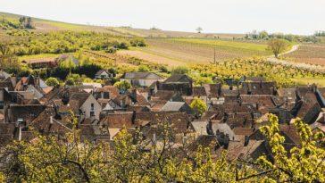 Los de Francia, los de la zona del Mosela y algunos de California, los vinos más caros del mundo para Wine-Searcher 1