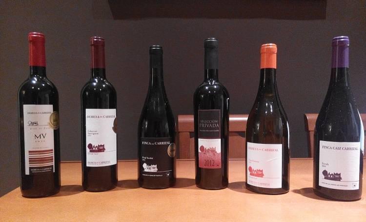 Premios y excelentes puntuaciones para los vinos de Pago Dehesa del Carrizal en este 2016 1