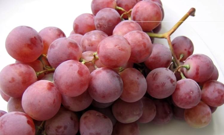Se vende un racimo de uvas en Japon por 9500 euros 1