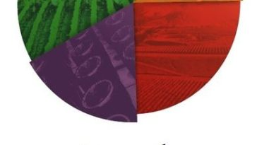 Nueva Zelanda quiere ser el primer productor mundial de vinos de calidad de baja graduación y bajos en calorías 1