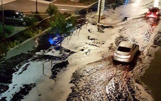 'Wine terrorists' flood french seaside town 1