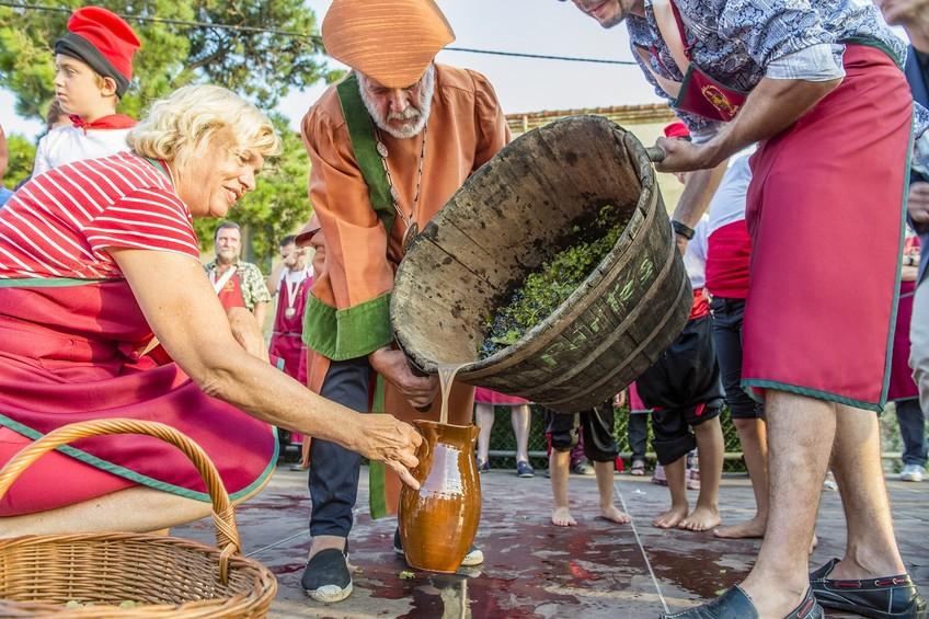 300 personas participaron en la Fiesta de la Vendimia de la DO Empordà 1