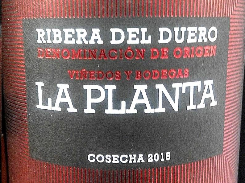 Catamos La Planta 2015Car 2