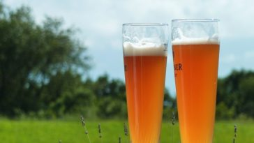 Ibiza y Cáceres con sus Festivales de la Cerveza este mes 1