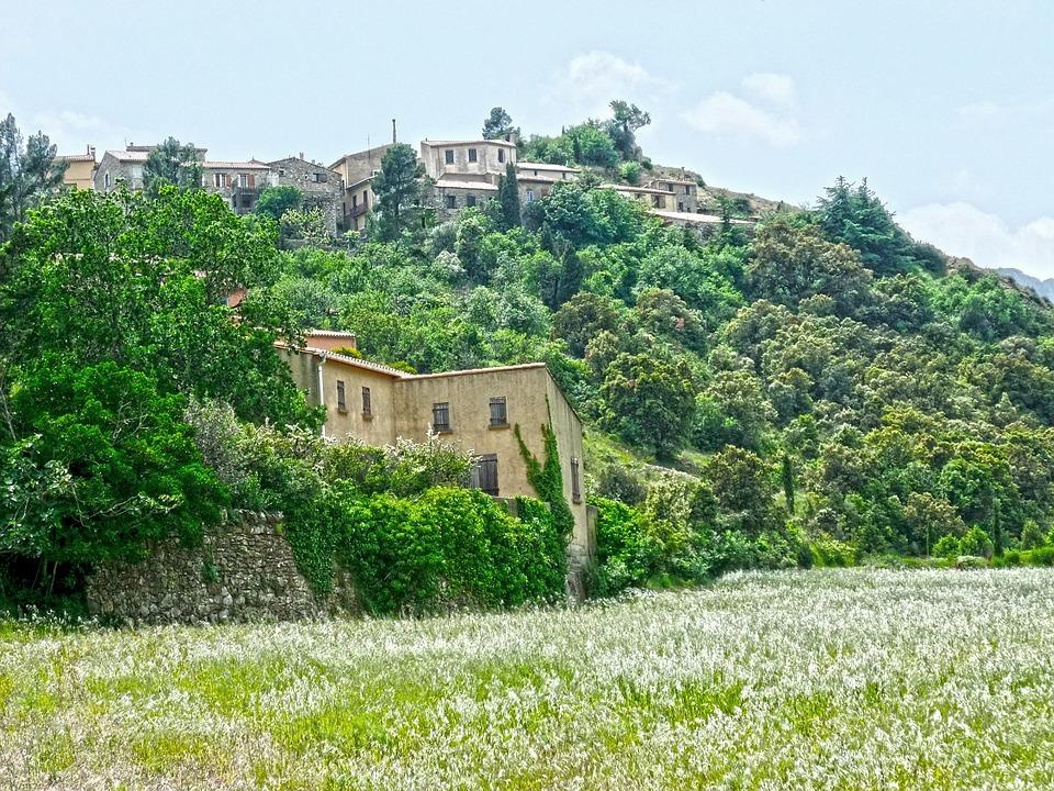 Los altos precios de los viñedos en Borgoña obligan a los productores a mirar hacia el Languedoc para cultivar variedades de Borgoña