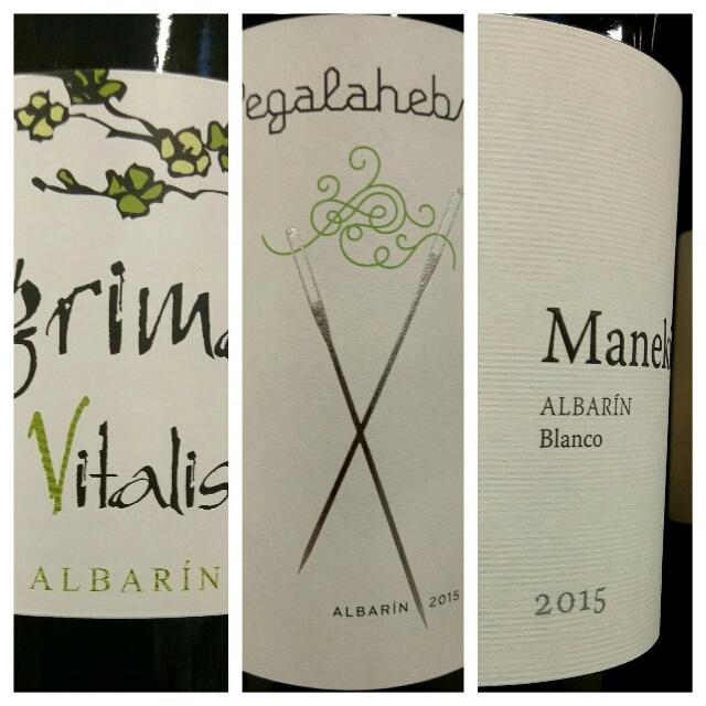 Cata de vinos blancos de varietal Albarín 1