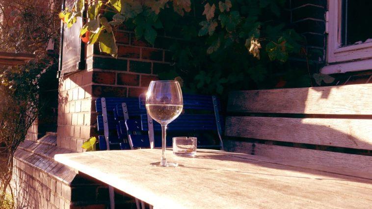 Un vaso de vino tinto antes de un cigarrillo reduce el daño vascular y el envejecimiento celular producido por el tabaco 1