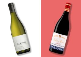 Dos vinos españoles entre los 50 vinos por debajo de 50 dólares recomendados por Bloomberg para 2017 1
