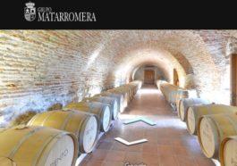 Grupo Matarromera ofrece visitas virtuales en 360º a través de su nueva web 1