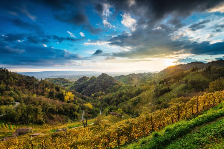 Oficial la candidatura de la región Conegliano Valdobbiadene, hogar de Prosecco DOCG, para ser Patrimonio de la Humanidad 1